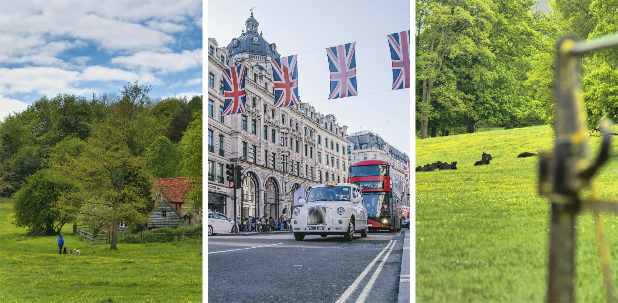 Moving from London to the Countryside 5 Reasons Why You Should Consider It