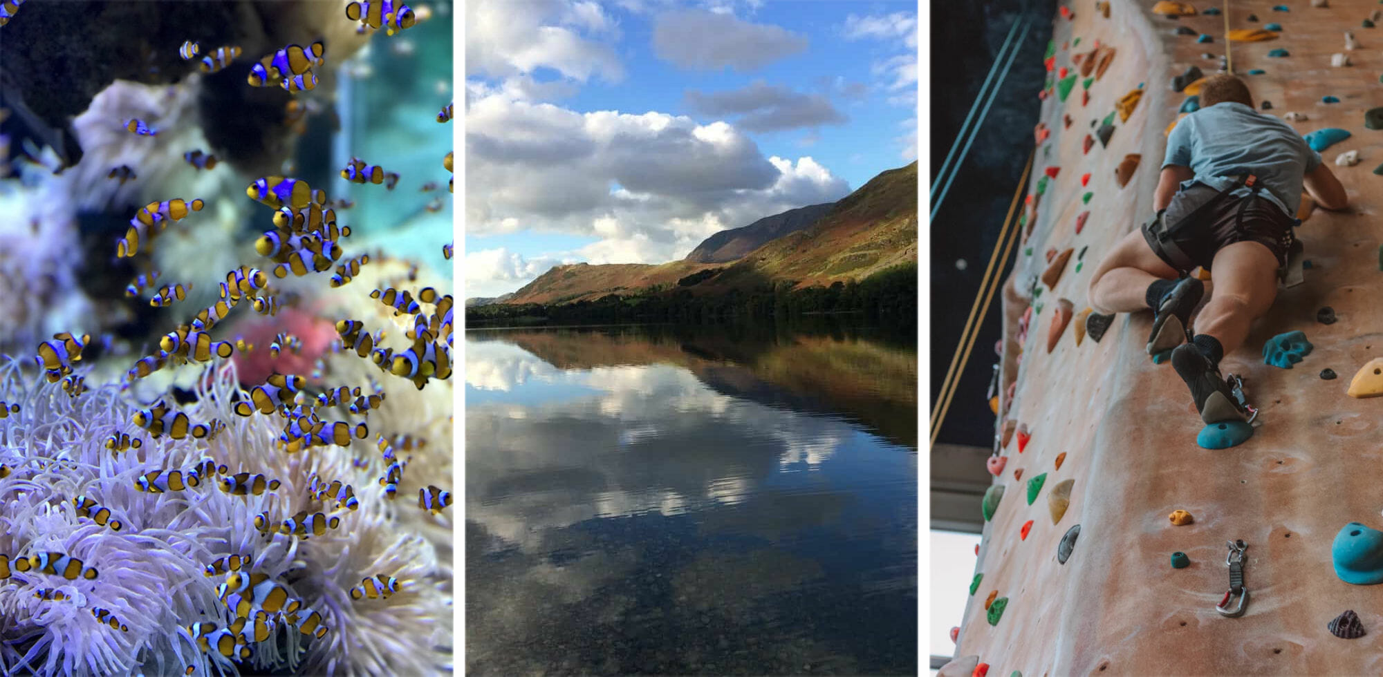 23 Things to Do in the Lake District when it Rains
