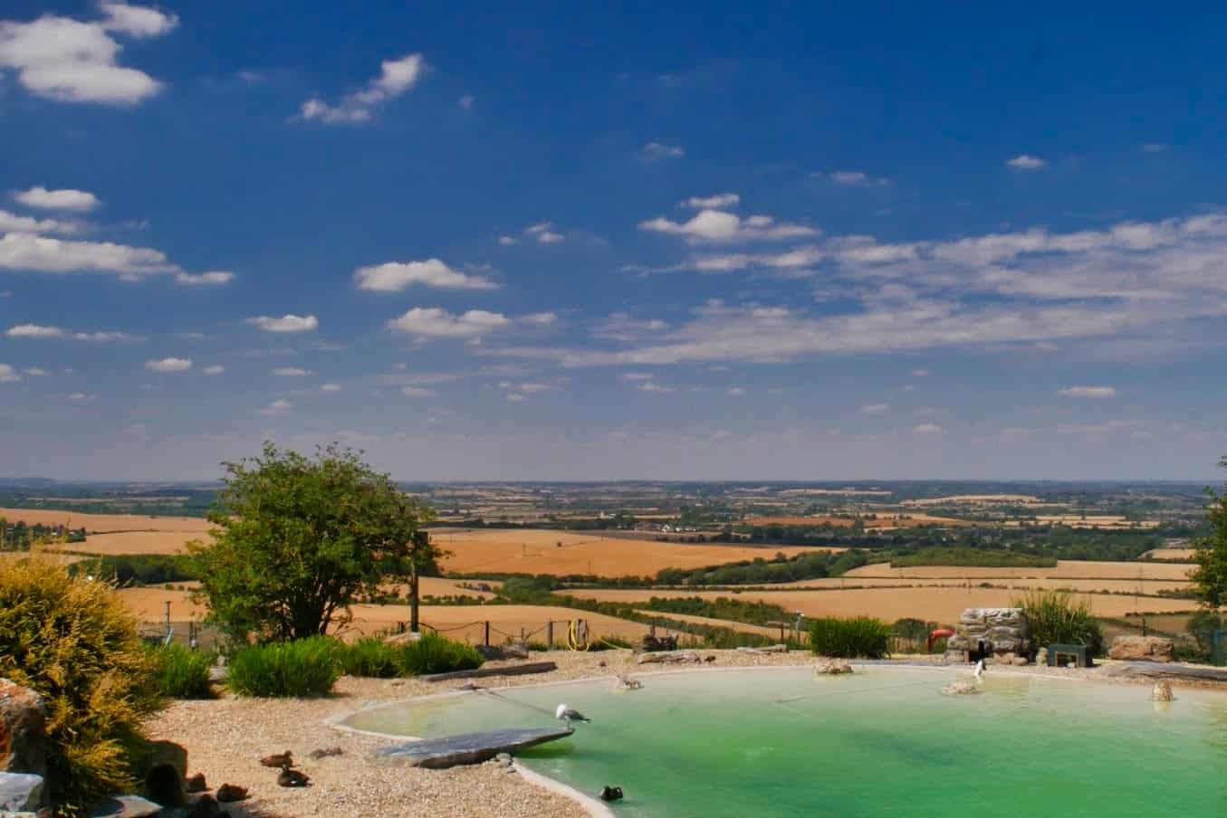 A penguin pool overlooking hills and fields