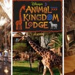 Disney's Animal Kingdom Lodge Review – is it worth the money?