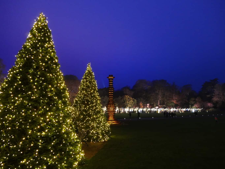 Christmas trees at night at Waddesdon Manor
