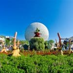 The Must-Have Guide to Disney World for Adults