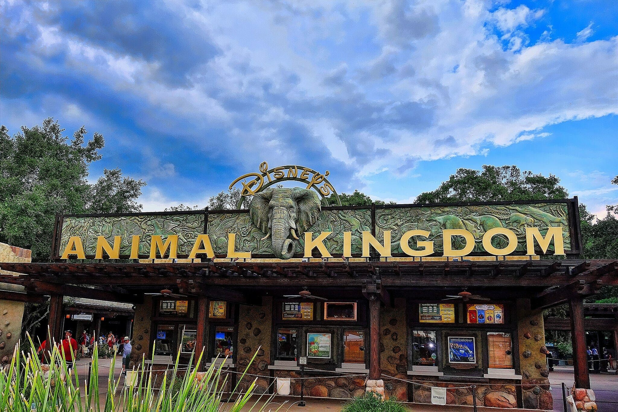 The entrance to Animal Kingdom made from gold letters with an elephant's head in the middle and blue sky in the background