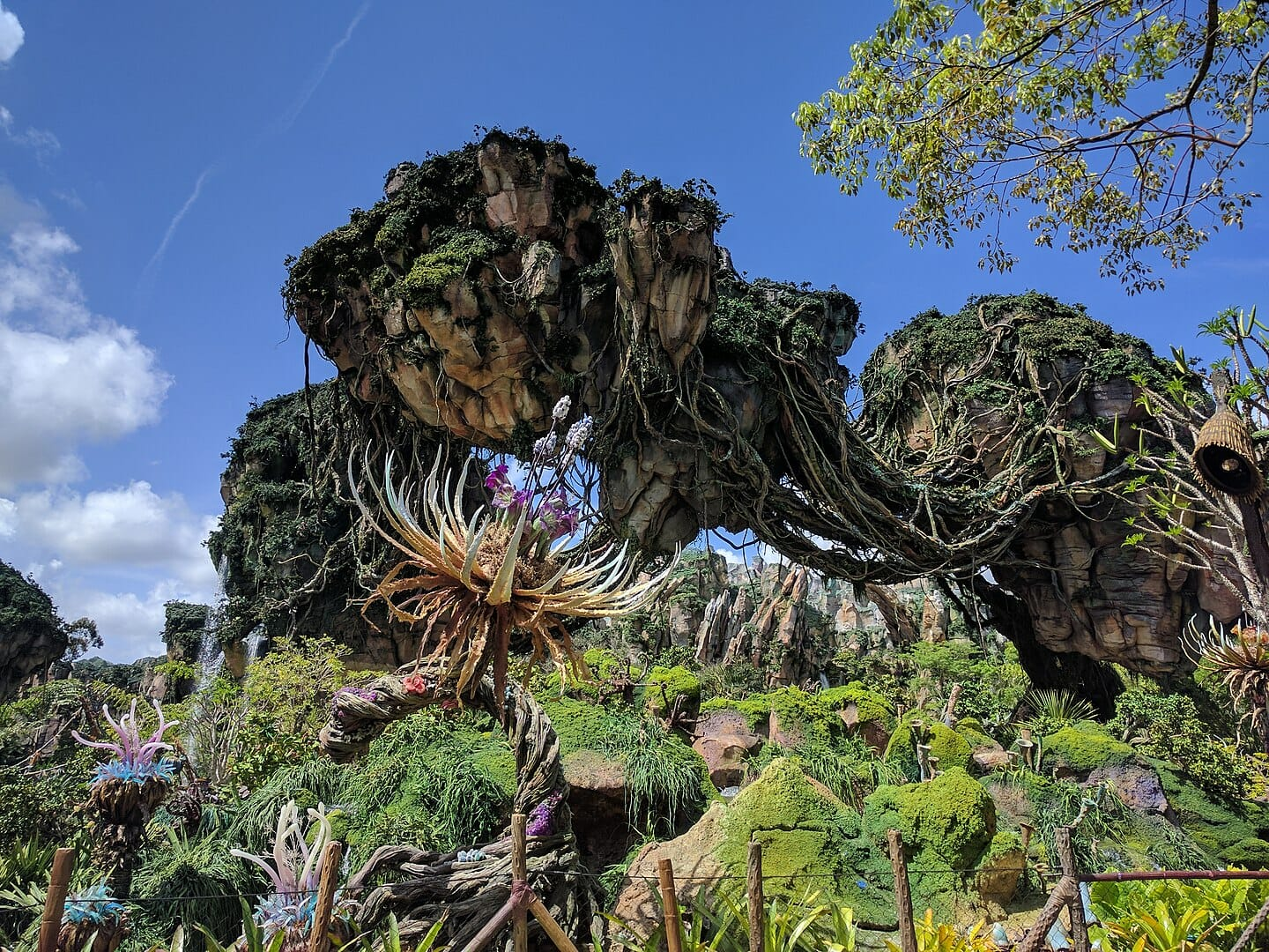 A crazy rock and vine structure covered in vegetation for the Avatar land of Animal Kingdom