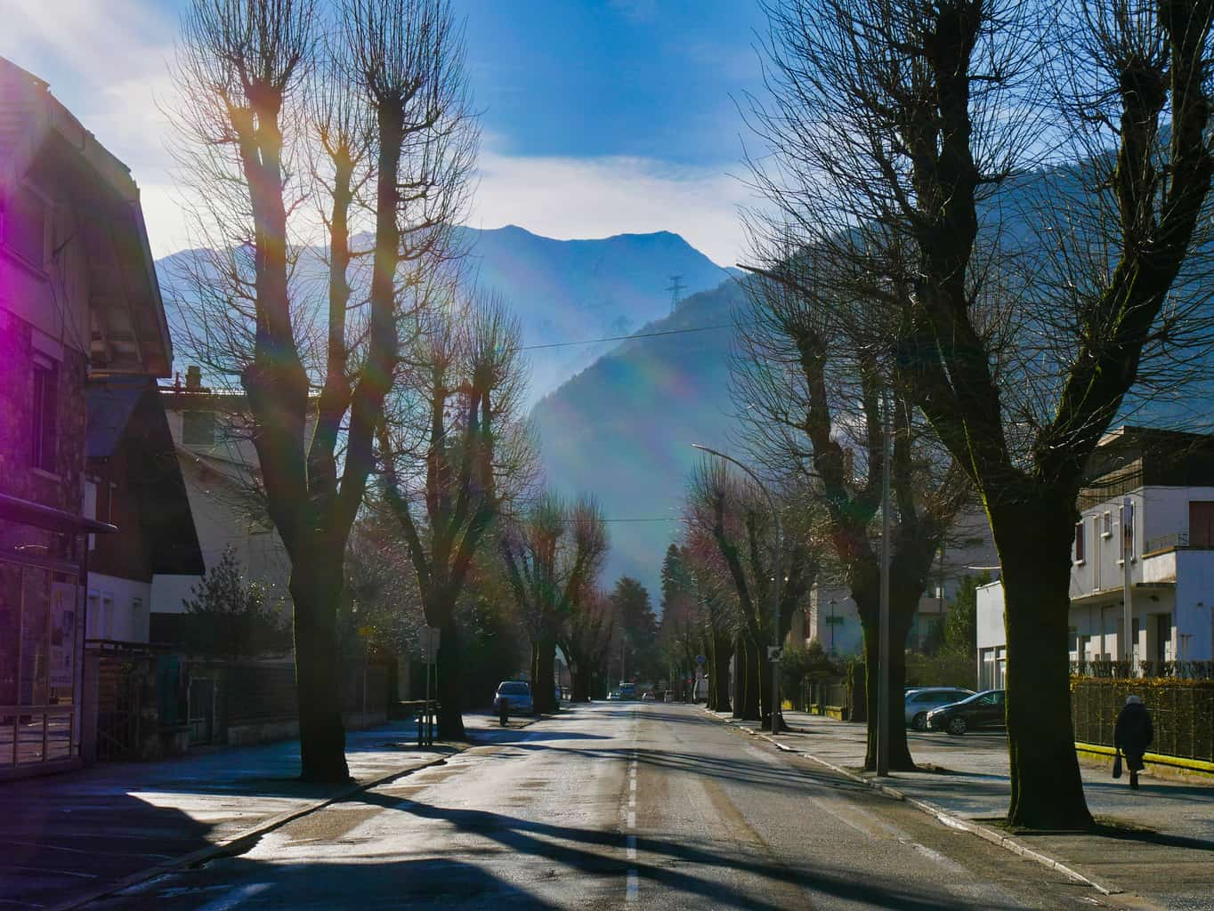 The French Alps from a street in Albertville from the middle of the road with trees either side