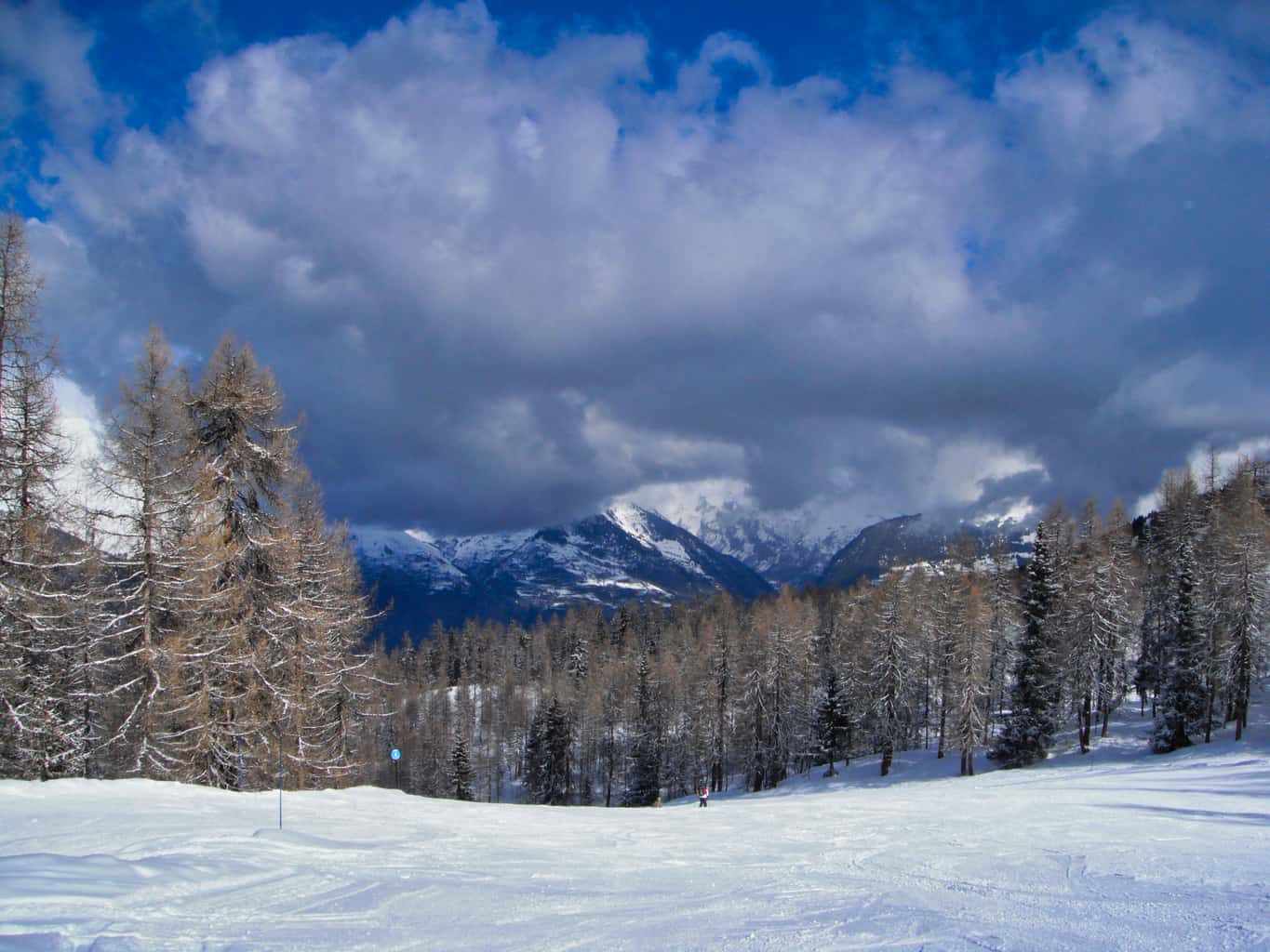 Ski slops with snowy trees with snowy mountains in the background