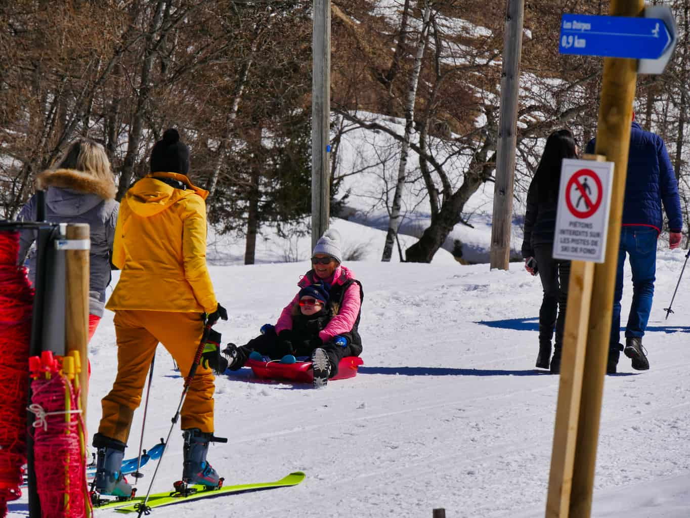 People sledging and skiing
