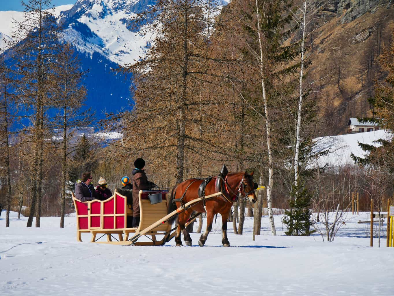 Horse pulling a sleigh in snow with mountains behind in Nordic Ski Area next to La Plagne