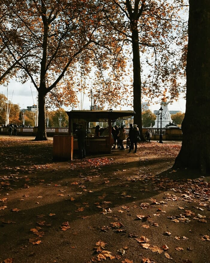 Leaves on the ground with trees and a food stall in London