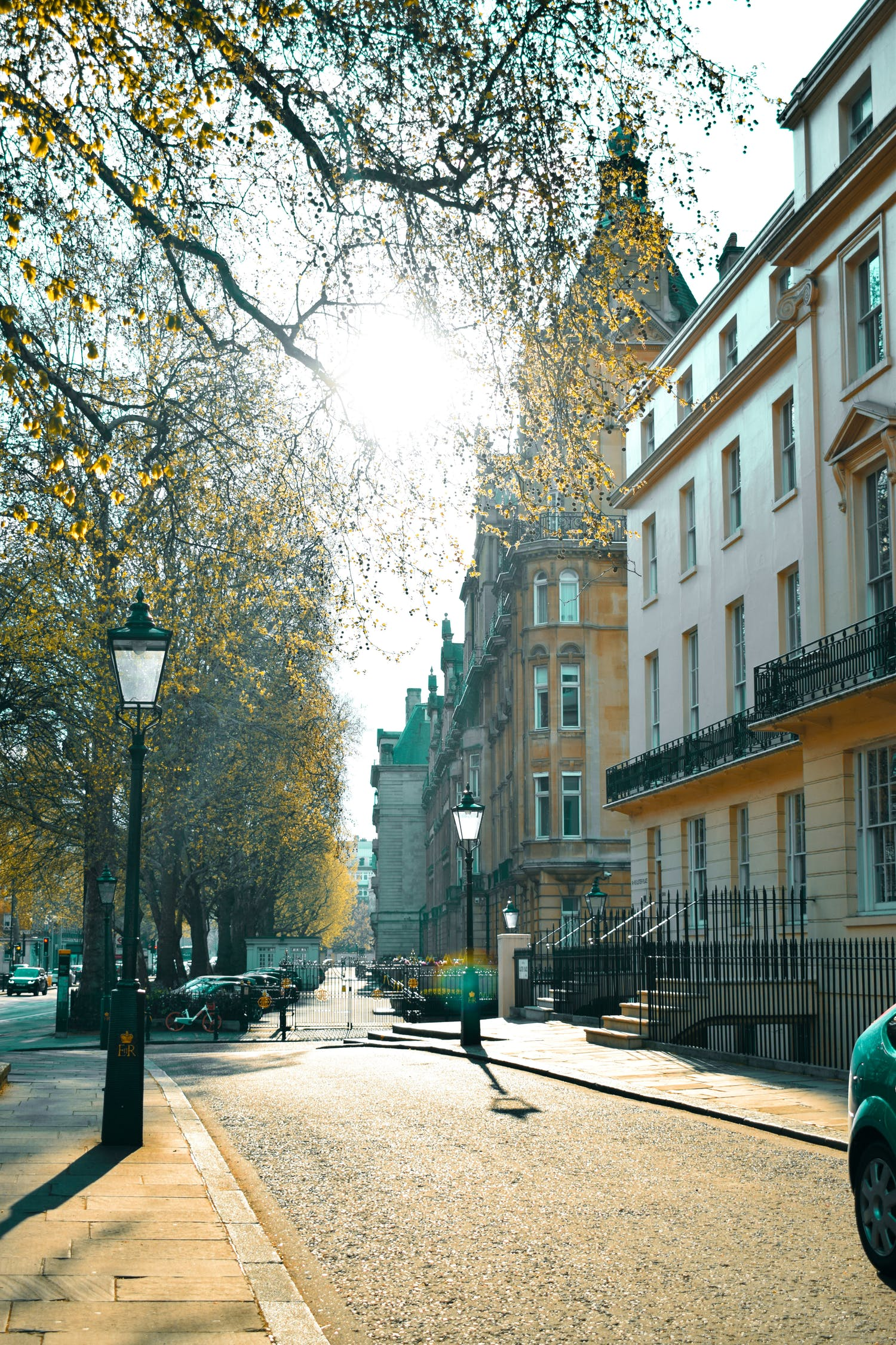 A street in London with tall buildings with autumn leaves