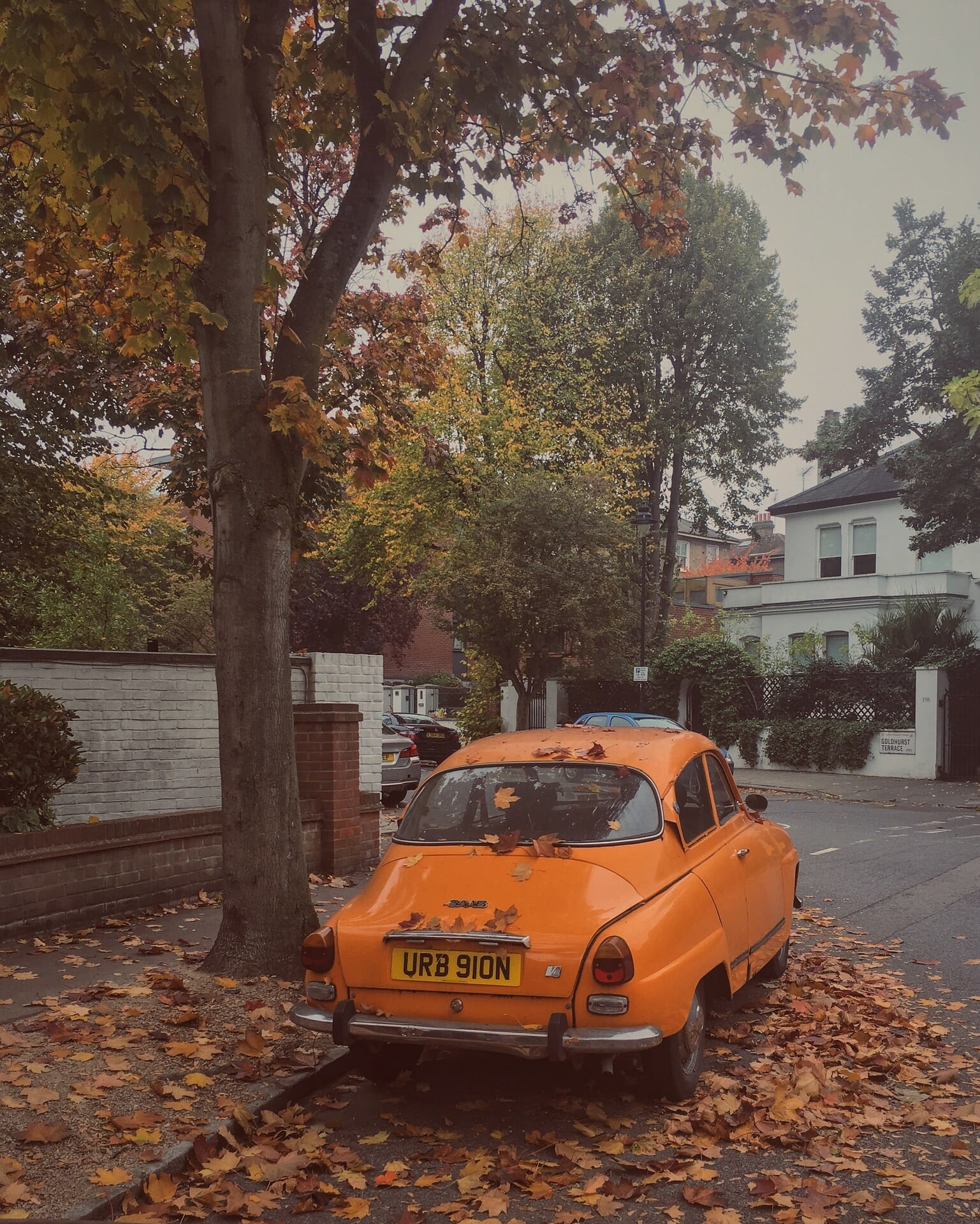 An old orange car under a tree with fall leaves around it