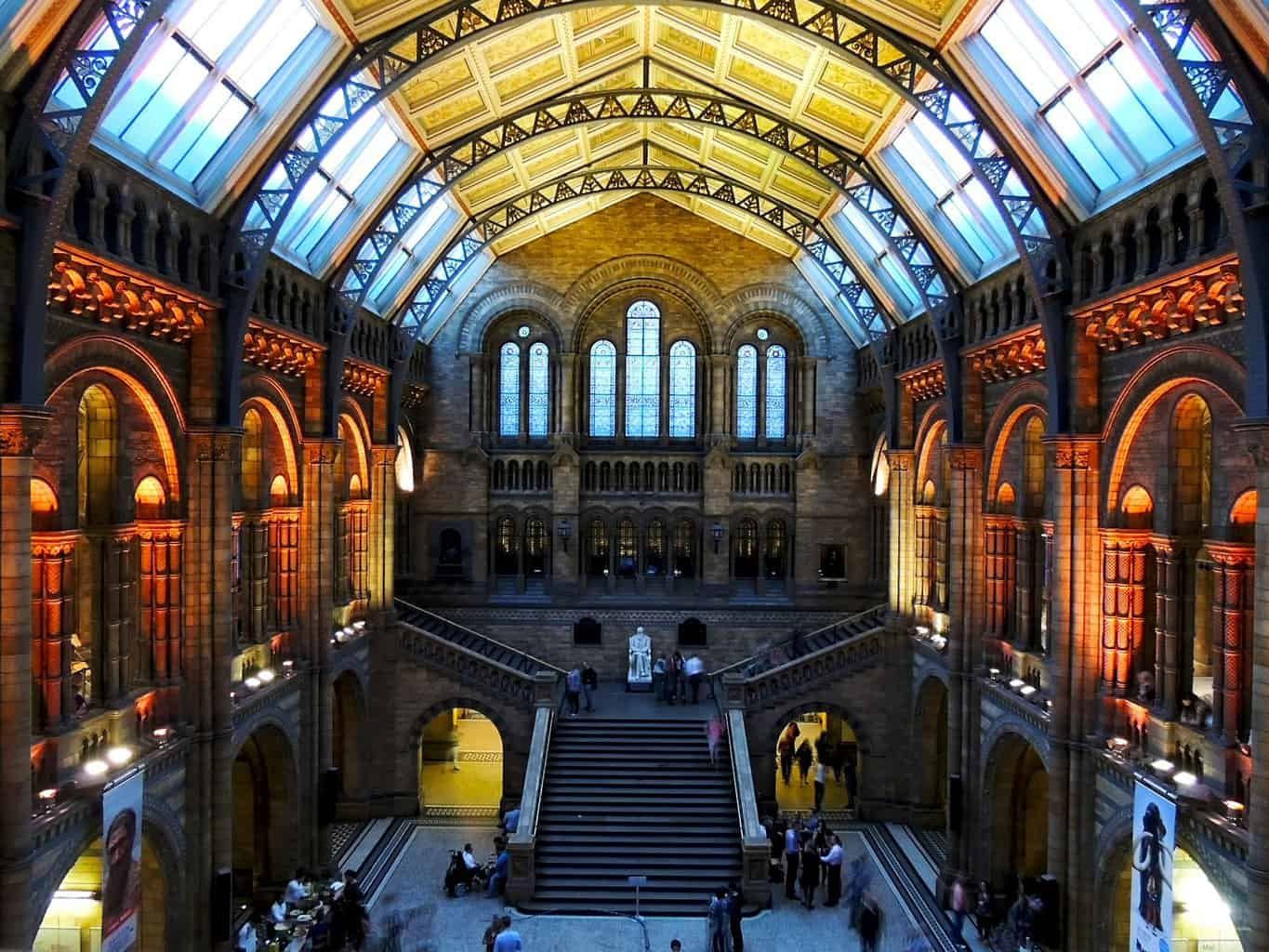 Natural History Museum London. Large room with stone steps and ceiling windows.