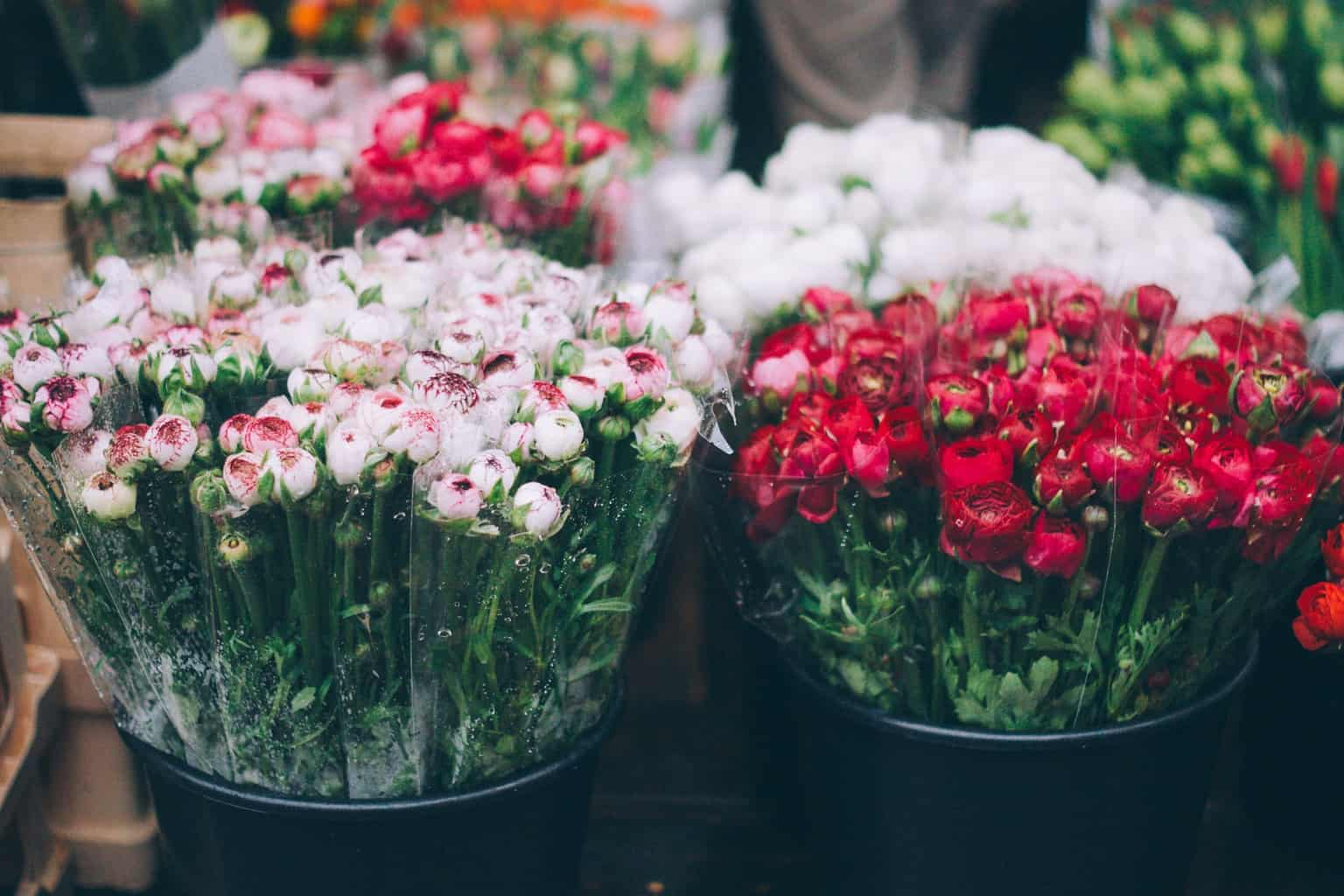 Red and pink flowers at a flower market