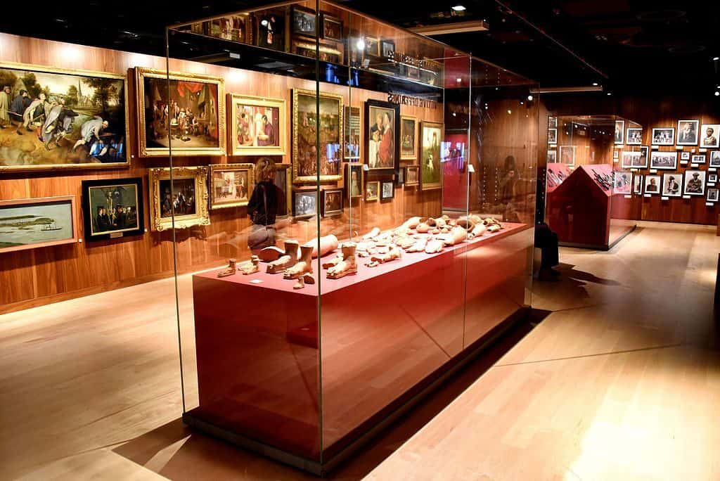 Display cabinet in Wellcome Collection London