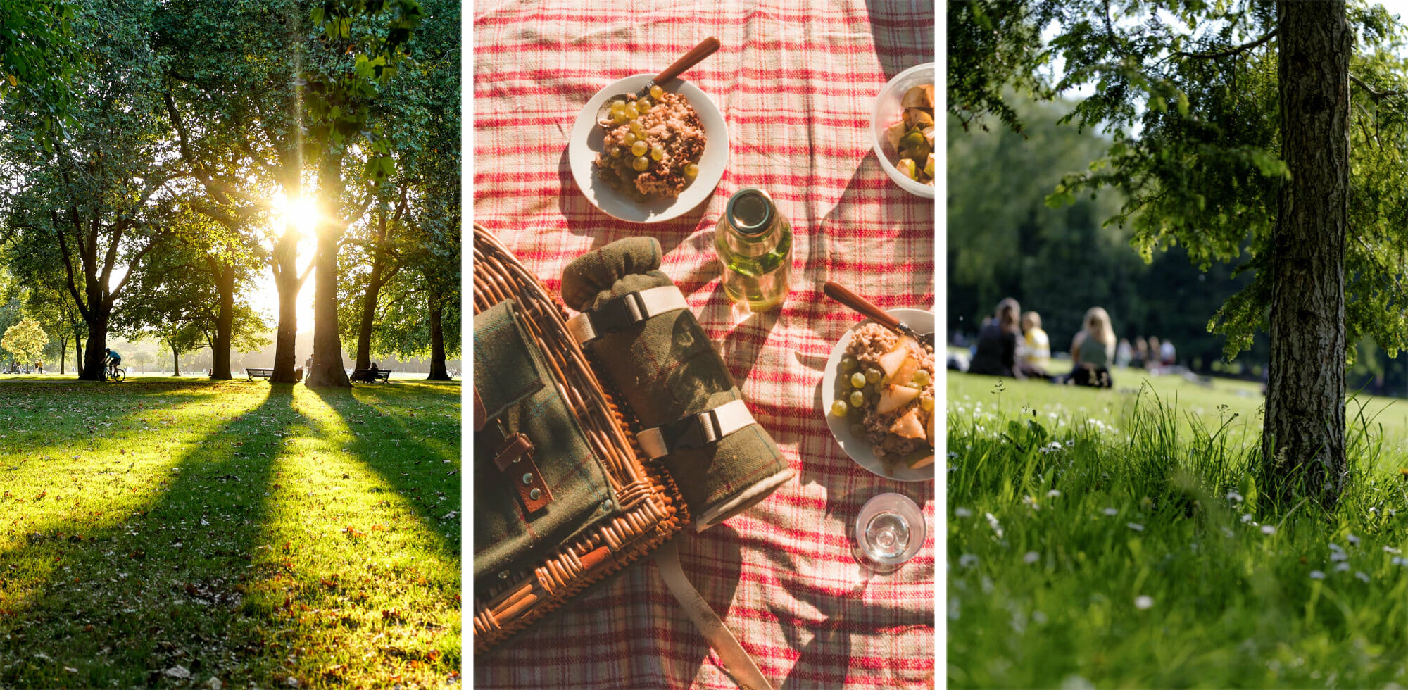Best Parks in London for a Picnic