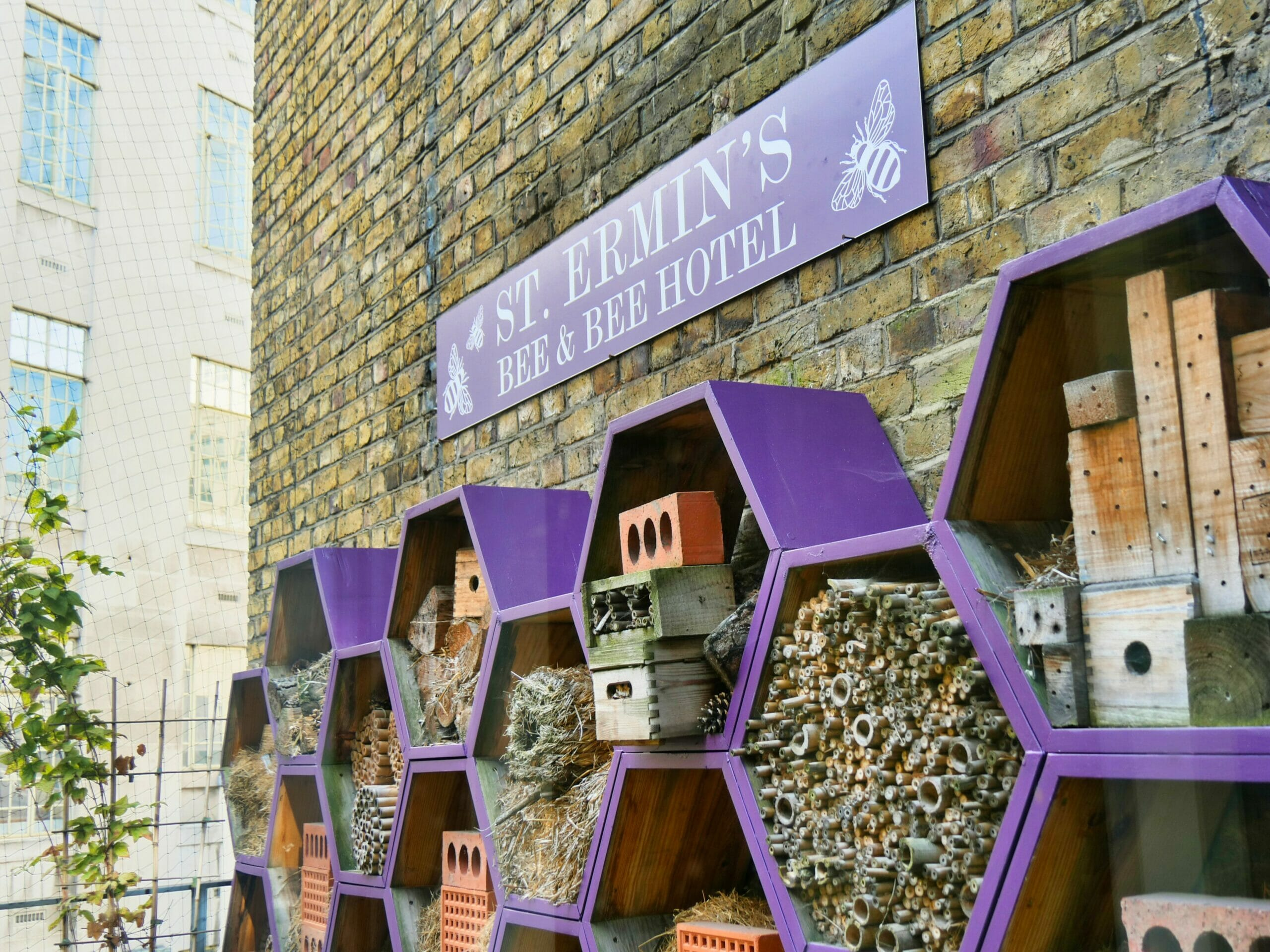 "The ""Bee and Bee Hotel"" at St. Ermin's Hotel - a set of bee houses on one of the top floors"