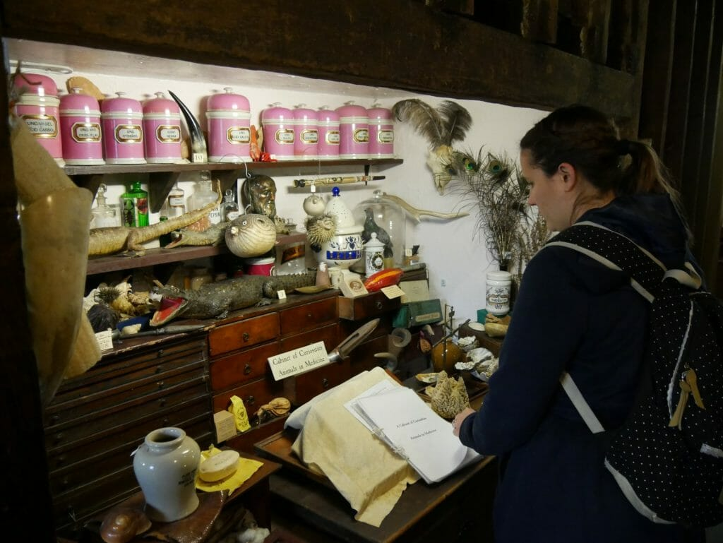 Kalyn looking at items at the Old Operating Theatre, London