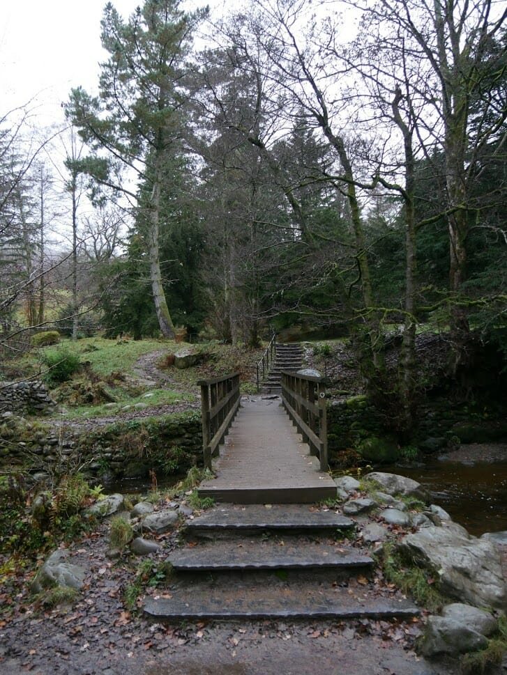 A footbridge on the Aira Force walk from The Quiet Site to Aira Force in Ullswater, surrounded by trees