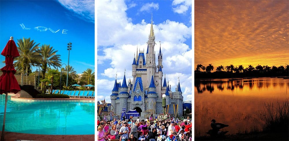 17 Signs You Grew Up in Florida