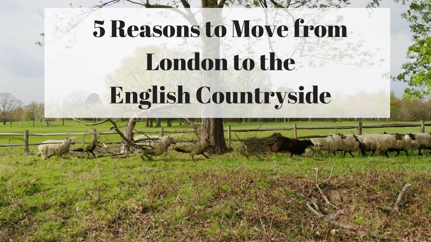 5 Reasons to Move from London to the English Countryside